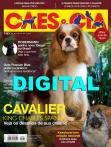 Edição 464 - Fevereiro/2018 - Digital