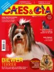 Edição 462 - Dezembro/2017