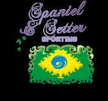 Categoria Spaniel & Setter (Sporting) - Pontuação